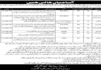 Pak Army Civilian NLI Regimental Centre Gilgit Jobs 2020